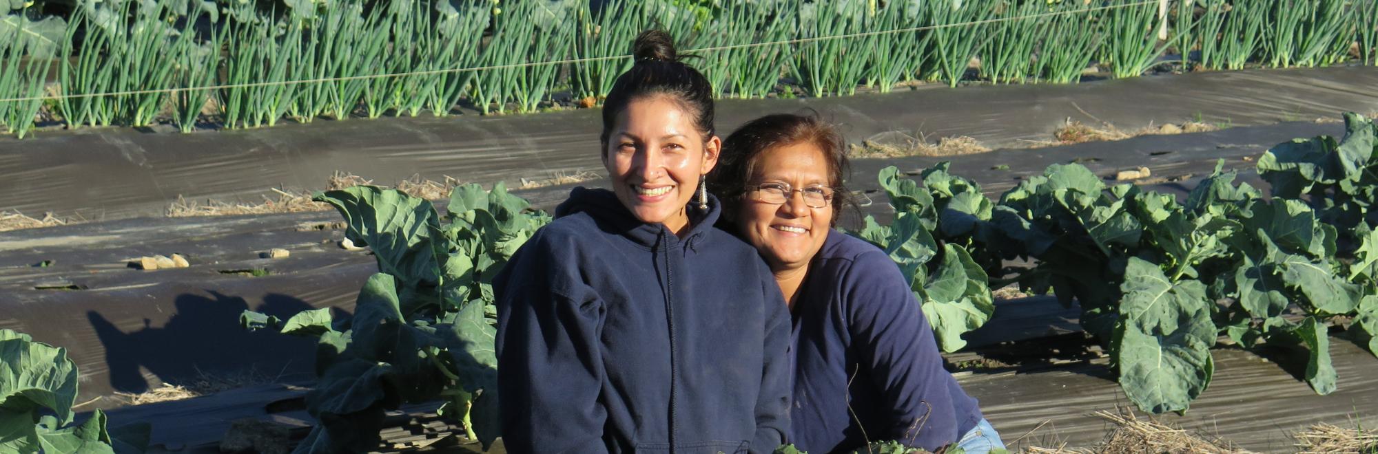 two women sitting in vegetable field on a farm
